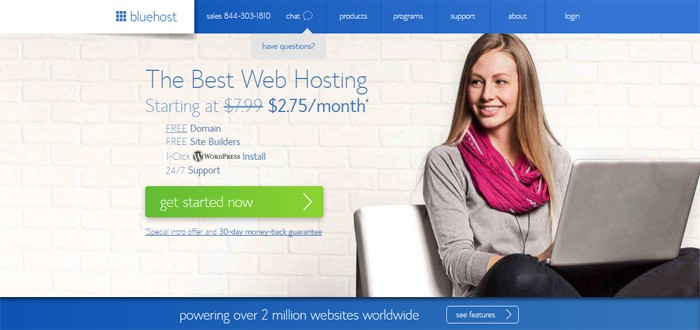 cheap bluehost wordpress hosting