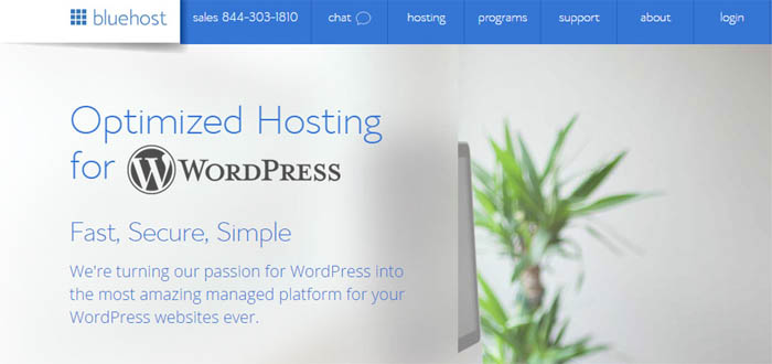 Bluehost exclusive for WordPress